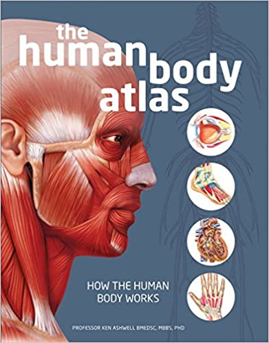 The Human Body Atlas How Works