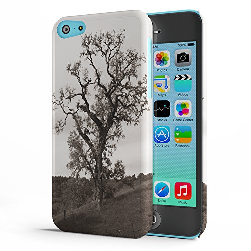 Koveru Back Cover Case for Apple iPhone 5C - The Giant Tree