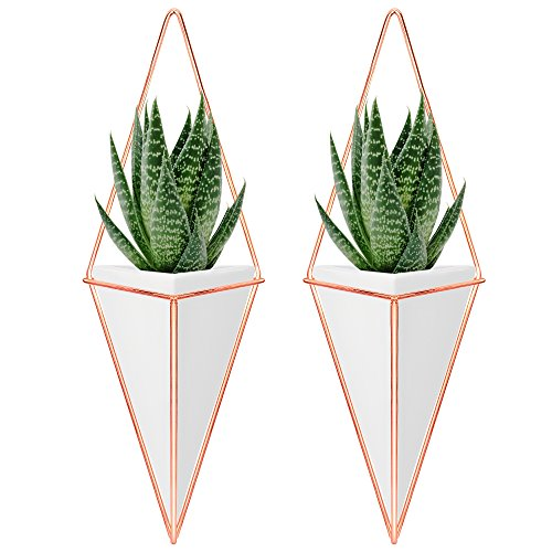 Nellam Ceramic Planter Set - 2 Pcs Modern Geometric Hanging Wall Pots - Copper Framed, Mounted Decorative Vases & Container for Indoor Plants & Succulents - For Flowers, Herbs, Vegetables (Trellis Rustic)