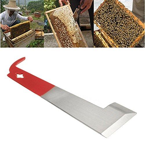 Kangnice Beekeeper Beekeeping Scraper Stainless