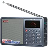 TECSUN ICR-110 TF Card MP3 Player Recorder Radio (upgrade version of ICR-100) Gray