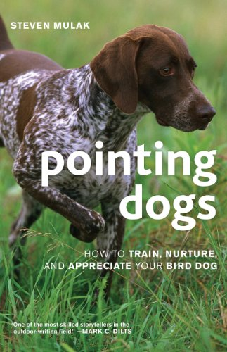 Pointing Dogs  How To Train  Nurture  And Appreciate Your Bird Dog