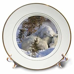Warm mattress - Decorative Porcelain Plate