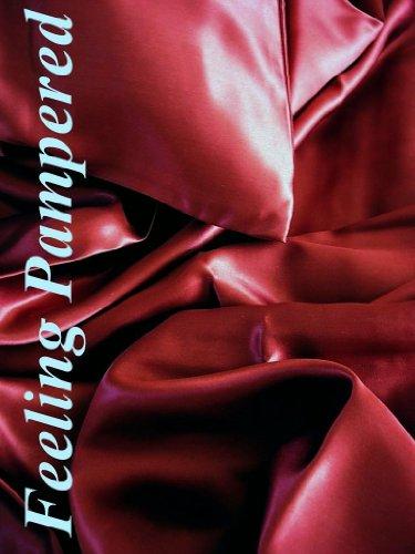 Luxury 3 Pcs 100% Silk Charmeuse Duvet Cover Set King Burgundy Red