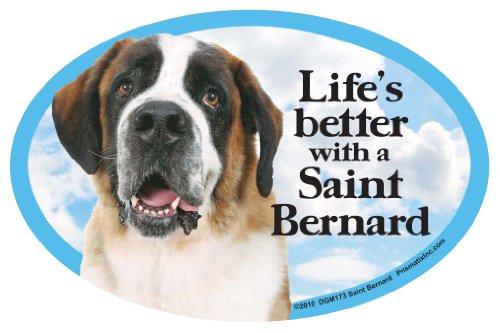 - Prismatix Saint Bernard Oval Dog Magnet for Cars