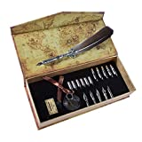 AIVN Calligraphy Pen - Antique Feather Quill with 17 nibs - Writing Case with Black Ink