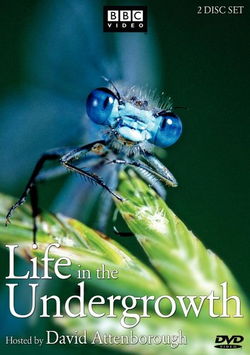 Life in the Undergrowth by Warner Home Video