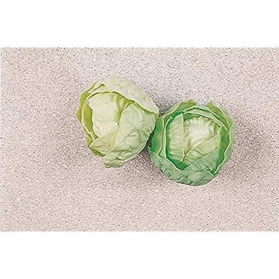 2mini têtes à salade en plastique–hohlattr Appen en plastique, imitation alimentaire, replikat Food Model, factice pour la décoration, auslagen conception, Requisite, Idée D&