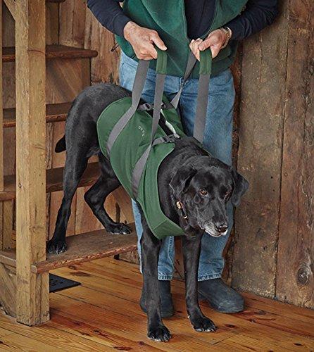 Orvis Dog Lift, Large