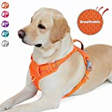Best Dog Harness No Pulls - BARKBAY No Pull Dog Harness Front Clip Heavy Review