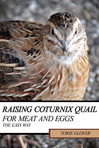 Raising Coturnix Quail for Meat and Eggs: the easy way by [Glover, Torie]