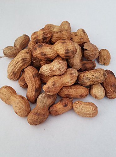 - Roasted in Shell Peanuts 1Lb Bulk Deal Naturally Unsalted Fancy Red Skin Mexican Snacks Appetizers Cacahuate Mani Rostizados