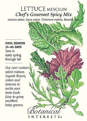Chef's Gourmet Spicy Mix Mesclun Lettuce Seeds - 1.5 grams - Botanical Interests