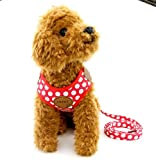 SELMAI Small Dog Harness Vest Leash Set Polka Dot Mesh Padded No Pull Leads for Puppy Pet Cat Red S