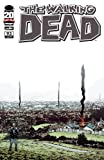 Walking Dead 93