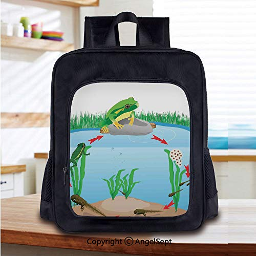 Kids School Backpack,Life Cycle of Tropic Tree Frog Presents with Aquatic Elements Evolution in Nature Nursery Room Decorations Classic,Plain Bookbag Travel Daypack,Multi
