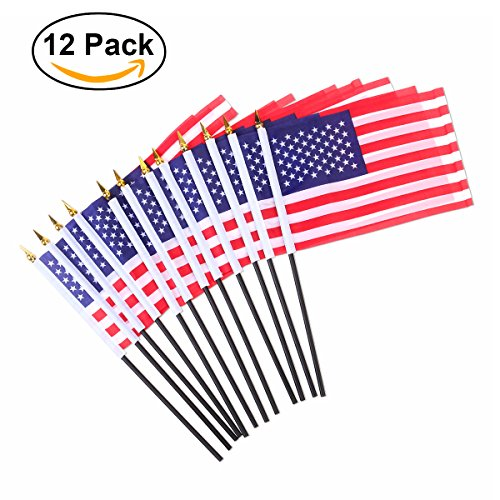 Tinksky 12pcs American Flags 8