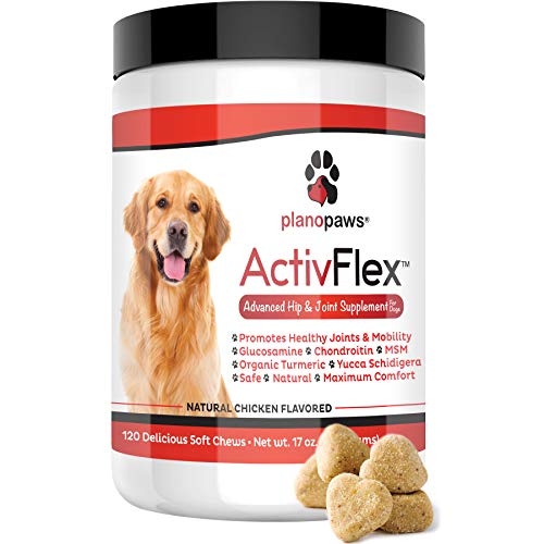 ActivFlex - Glucosamine for Dogs - Safe Hip and Joint Supplement - Natural Dog Joint Support - Arthritis Pain Relief - Chondroitin Turmeric MSM - Improves Mobility & Hip Dysplasia - 120 Chew Treats by planopaws