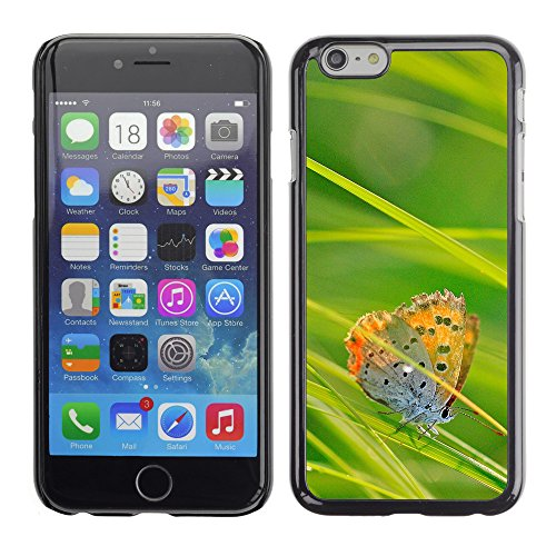 Premio Sottile Slim Cassa Custodia Case Cover Shell // V00003060 papillon et l'herbe verte // Apple iPhone 6 6S 6G PLUS 5.5""