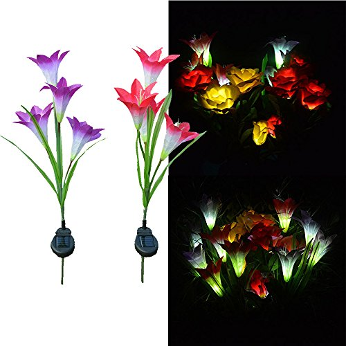 - Beyonds LED Solar Lily Flower Lights, 4-Brench 7 Color Changing Outdoor Garden Stake Lamps Bigger Flowers and Wider Solar Panel for Garden Patio Yard Pathway Party Holiday Decoration(Red or Purple)