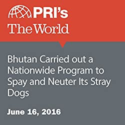 Bhutan Carried out a Nationwide Program to Spay and Neuter Its Stray Dogs