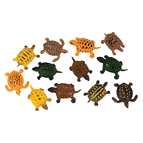 Turtles approximately 1 5 2 long