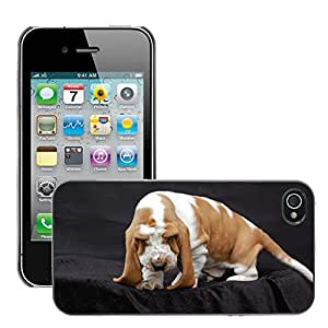 Hot Style Cell Phone PC Hard Case Cover // M00112867 Basset Dog Fold // Apple iPhone 4 4S 4G