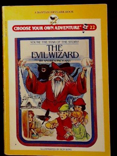 Evil Wizard (Skylark Choose Your Own Adventure)