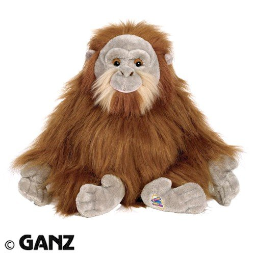 Webkinz Orangutan with Trading Cards & Magnetic Bookmark