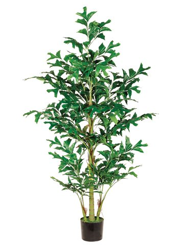 6' Fishtail Palm Tree w/370 Lvs. in Pot Green (Pack of 4)
