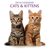 2014 Calendar: Cats & Kittens: 12-Month Calendar Featuring Delightful Photographs of Cats and Kittens by