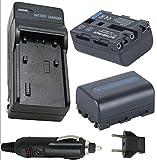 Battery (2-Pack) and Charger Sony GV-D1000 GV-D1000E Portable MiniDV 4.0'' Video Walkman