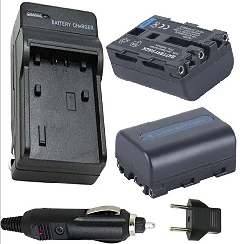 Battery (2-Pack) and Charger Sony GV-D1000 GV-D1000E Portable MiniDV 4.0'' Video Walkman by Unknown