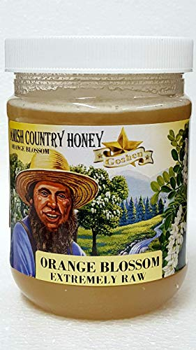 Amish ORANGE BLOSSOM Extremely Raw Honey 1Lb