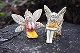 Bundle of 2 Miniature Sitting Fairy Garden Fairies – Faylinn and Ellette