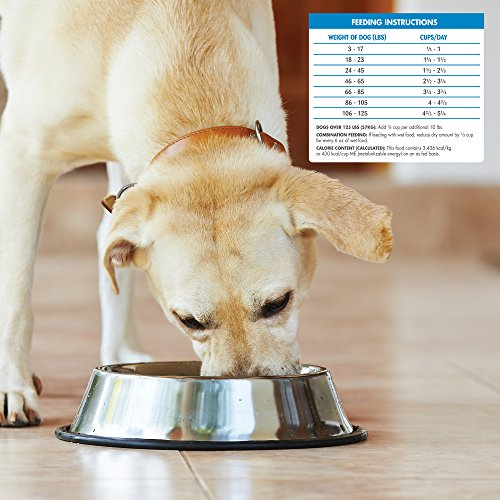 Wellness Simple Natural Grain Free Dry Limited Ingredient Dog Food, Turkey & Potato, 26-Pound Bag by Wellness Natural Pet Food (Image #6)