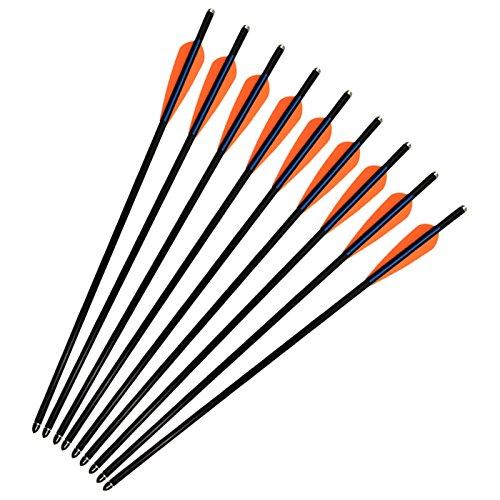 SHENG-RUI Fiberglass Crossbow Bolts Arrows 16 inch 8.8mm 0.346 Inch Diameter Fletched 4 Inch Vanes Bullet Points Moon Nock Archery Target Shooting (12 Pack) - Crossbow Fiberglass