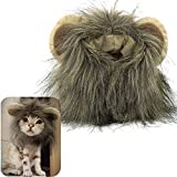 MEWTOGO Lion Mane Wig Funny Cat Kitty Little Puppy Costume, Adorable Pet Turned Hat, Small