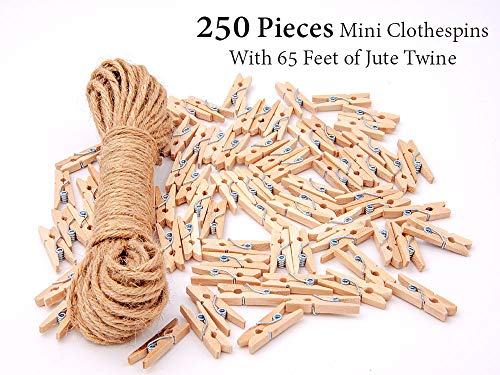 Mini Clothespins | 250 Pieces Mini Clothespins with 65 Feet of Jute Twine | 1-Inch Natural Wooden Clips for Decorations and Gifts by Voatation]()