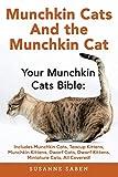 Munchkin Cats And the Munchkin Cat: Your Munchkin