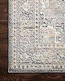 Loloi II Lucia Collection Distressed Persian Area