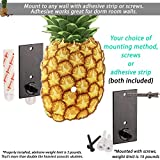 String Swing Ukulele Adhesive Wall Mount Pineapple Stand for Mandolin and Ukele? Concert Pineapple Soprano Tenor and Baritone Compatible ? Case Alternative Kit for Home or Studio - Pineapple CC62UK-P
