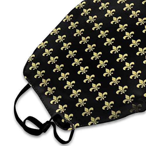 Golden Mardi Gras Fleur De Lis Face Mask Anti Dust Breathable Mouth Mask Comfortable Anti Pollution Muffle Mask With Adjustable Straps For Kids Men And Women