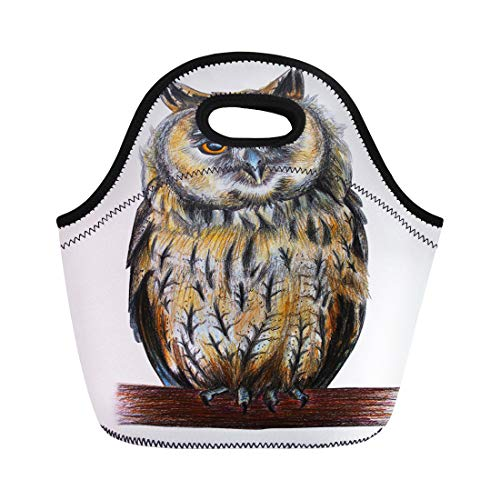 (Semtomn Lunch Tote Bag Brown Barn Eared Owl Drawing Longed Red Beautiful Bird Reusable Neoprene Insulated Thermal Outdoor Picnic Lunchbox for Men)