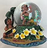 Snowglobe with Plumeria Hawaiian Design 60 mm