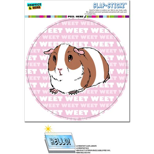 Guinea Pig - Pet Critter on Pink Circle SLAP-STICKZ(TM) Automotive Car Window Locker Bumper Sticker ()