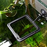 cyclamen9 Aquarium Fish Tank Feeding Ring Floating Food Tray Feeder with Suction Cup New (square,black)