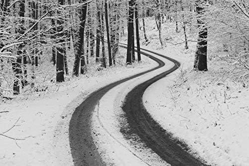 雪道の壁紙-自然の壁紙-#29283 - 白黒の キャンバス ステッカー 印刷 壁紙ポスター はがせるシール式 写真 特大 絵画 壁飾り120cmx80cm
