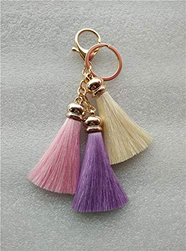 Amazon.com: Rarido Ice Silk Tassel Bag Charm Multicolor ...