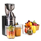 water filter pitcher bed bath and beyond Flexzion Masticating Juicer Machine - Slow Cold Press Juice Extractor Maker Electric Juicing Vertical Stand for Fruit, Vegetable, Greens, Wheat Grass & More with Big Cup & Juicing Bowl